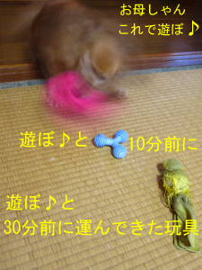 100501026
